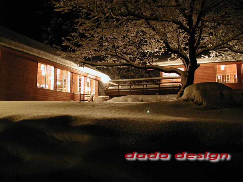 2003dadaforest (10).jpg