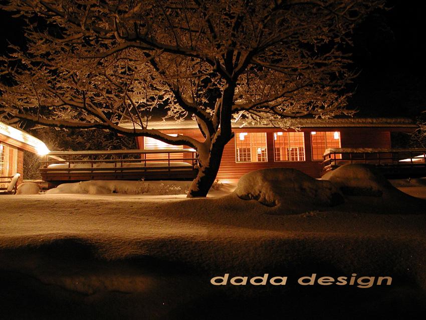 2003dadaforest (2).jpg