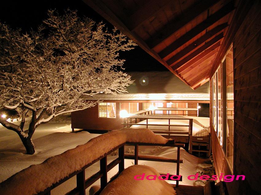 2003dadaforest (4).jpg