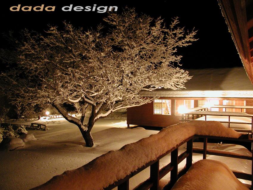 2003dadaforest (5).jpg