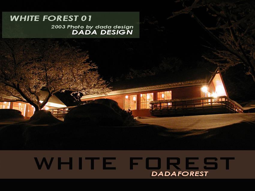 2003dadaforest (SS).jpg