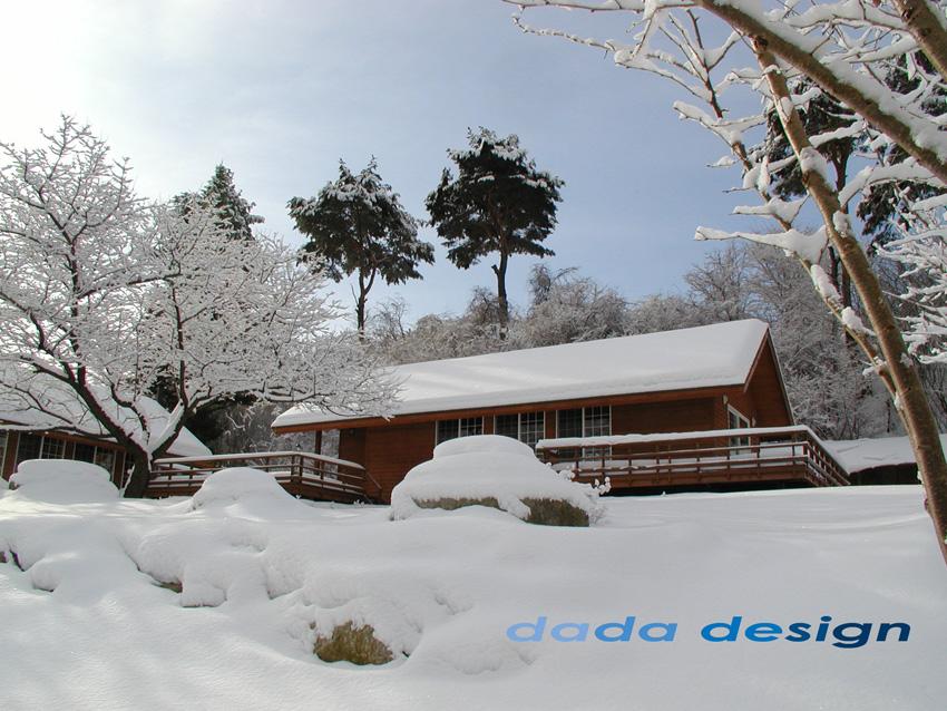 2003dadaforest (14).jpg