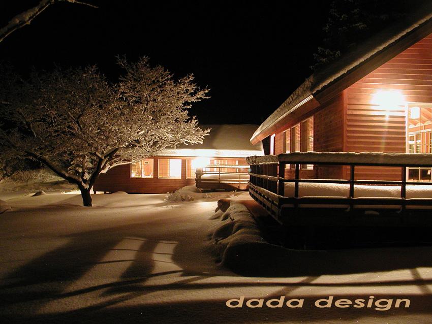 2003dadaforest (16).jpg